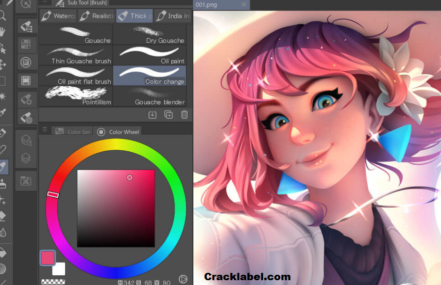 Clip Studio Paint EX Key